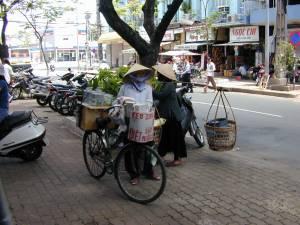 Vietnam-2001 110 20081223 1741618204