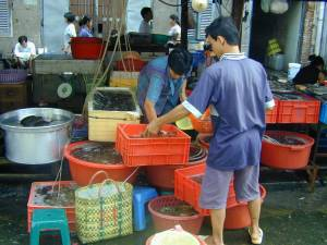 Vietnam-2001 121 20081223 1291676170
