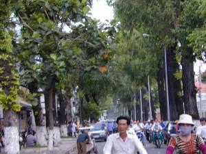 Vietnam-2001 138 20081223 1094968979