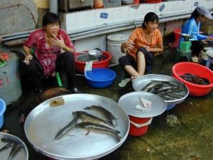Vietnam-2001 142 20081223 1990663943