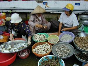 Vietnam-2001 145 20081223 1207428736
