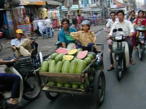 Vietnam-2001 193 20081223 1147229863