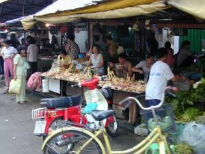 Vietnam-2001 199 20081223 1609323010