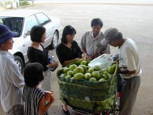 Vietnam-2001 203 20081223 1276665827