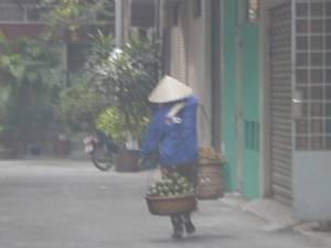 Vietnam-2001 320 20081223 1420074634