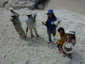 Vietnam-2001 63 20081223 2016136778