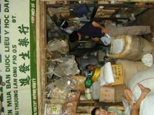 Vietnam-2001 88 20081223 1395386026