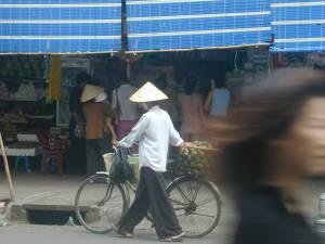 Vietnam-2001 98 20081223 1570629901
