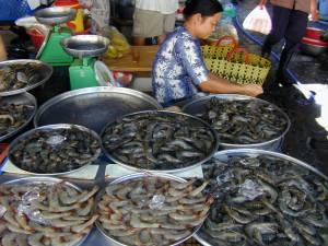 Vietnam-2002 116 20081223 1274299273
