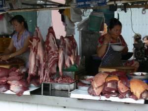Vietnam-2006 106 20081223 1206431421