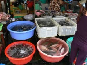Vietnam-2006 108 20081223 1452836933