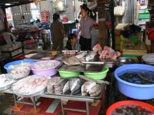 Vietnam-2006 109 20081223 1036284244
