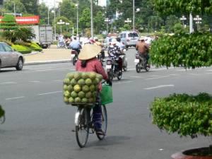 Vietnam-2006 111 20081223 1957529187