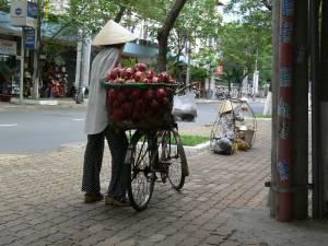 Vietnam-2006 145 20081223 1831048195
