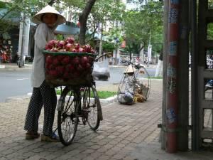 Vietnam-2006 146 20081223 1903345211