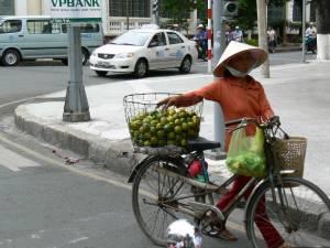 Vietnam-2006 154 20081223 1764023509