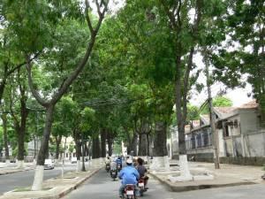 Vietnam-2006 156 20081223 1811236236