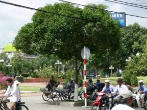 Vietnam-2006 46 20081223 1858859434