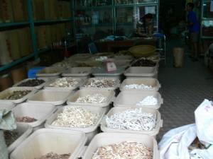 Vietnam-2006 62 20081223 1624962155