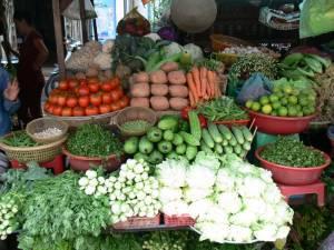 Vietnam-2006 95 20081223 1691189455
